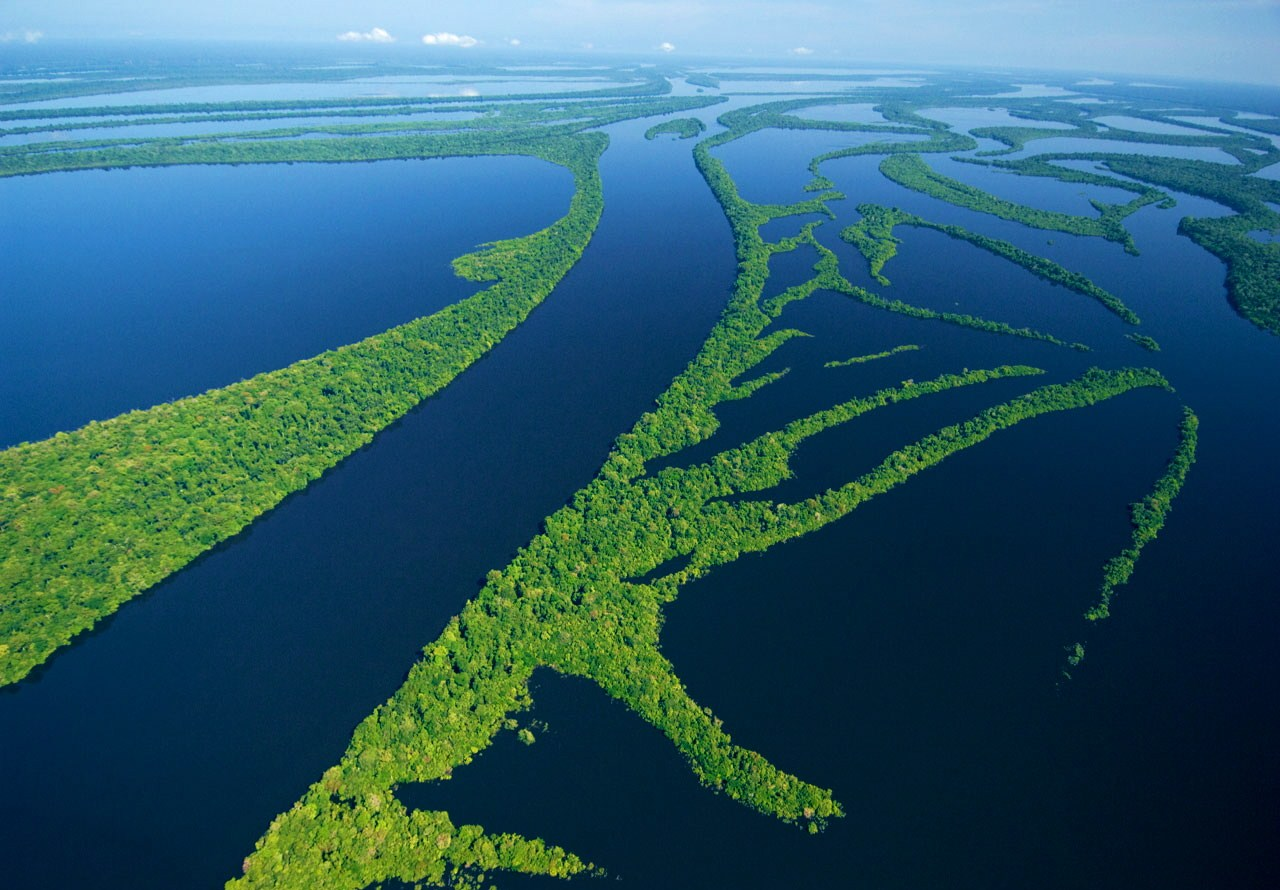The Park changes from the drought and flood of the Rio Negro, which bathes the islands. The landscape opens up a new vision and sensations of the world, enhancing the visitor's senses, making the nautical tour even better.