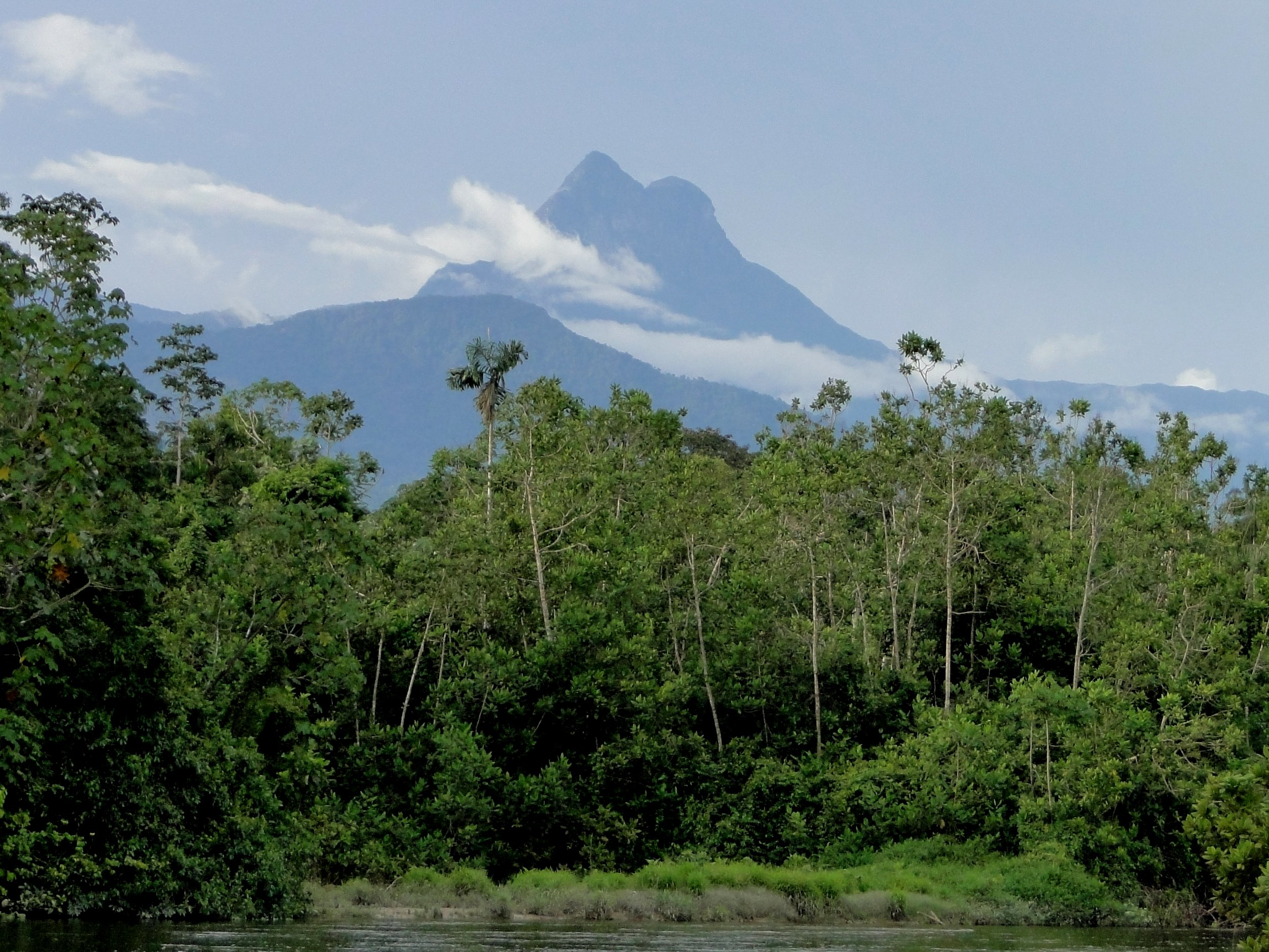 Due to the very high altitude, the vegetation is different and that is why there is a lot of research on this vegetation. Pico da Neblina is one of the most attractive attractions in the Amazon and is considered a Natural Heritage.