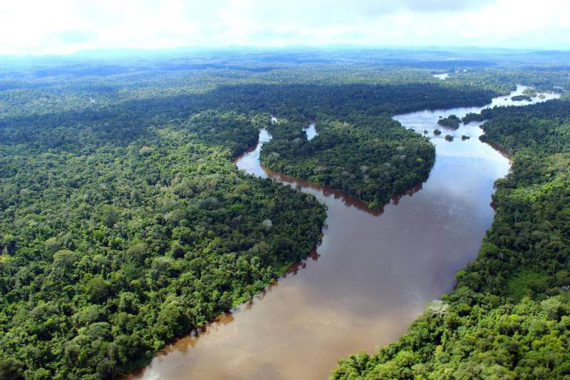 In the Brazilian Amazon it is possible to find a variety of tourist tours that add value to the culture of the Northern region. The Amazon Rainforest is the largest tropical forest in the world where the largest existing biodiversity system is found.