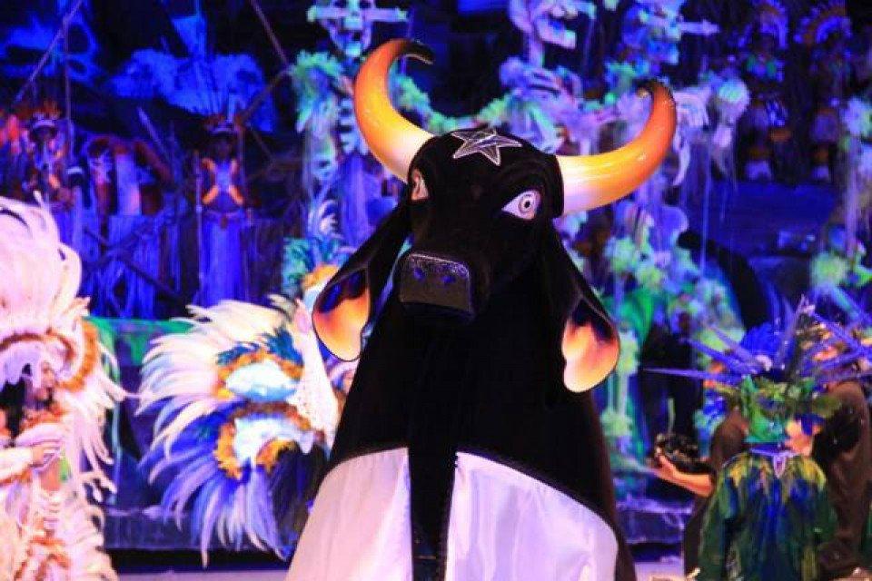El Festival Folclórico de Parintins es un evento que tiene lugar anualmente en la última semana de junio, en la ciudad de Parintins, en el estado de Amazonas. La fiesta está reconocida como Patrimonio Cultural de Brasil por el Instituto Nacional del Patrimonio Histórico y Artístico (IPHAN). El festival muestra la disputa de dos grupos folclóricos llamados bueyes: uno de ellos es el Boi Caprichoso, que está representado por los colores azul y blanco.