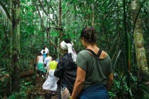O Turismo Ecológico na Amazônia é uma ótima oportunidade para quem quer aprender curiosidades sobre a floresta e os elementos que a compõem, assim, desenvolvendo uma educação ambiental para os turistas.