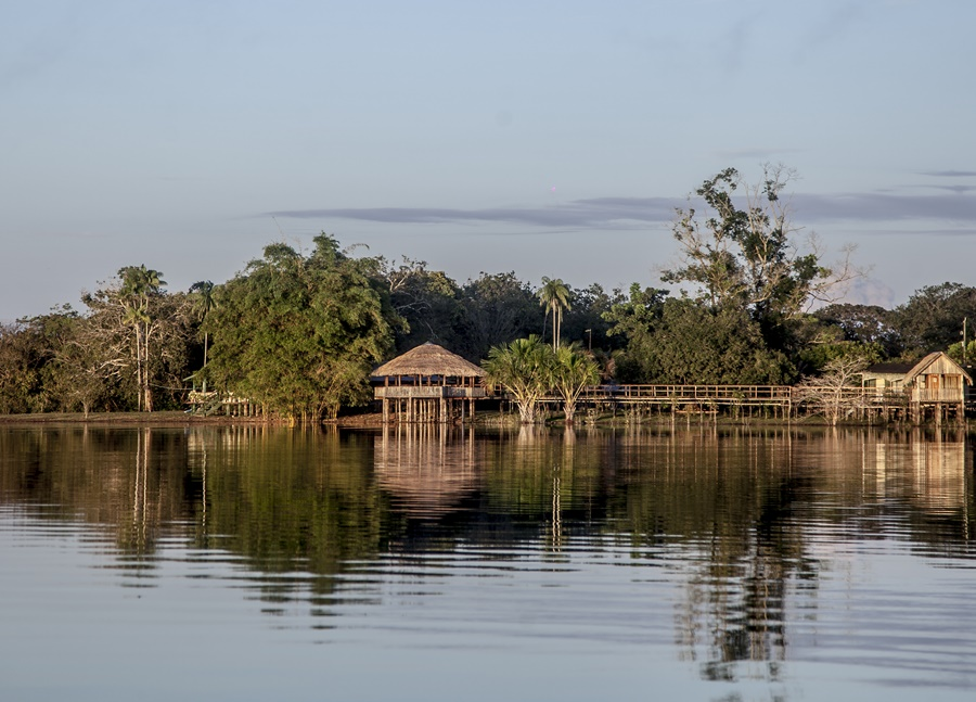 Tourism in the village of Acajatuba takes place with the pink dolphins, which appear on the banks of the lake, with the floating jungle hotels where there are also trails on the jungle, animal watching, handicrafts and, mainly, for visiting the community.