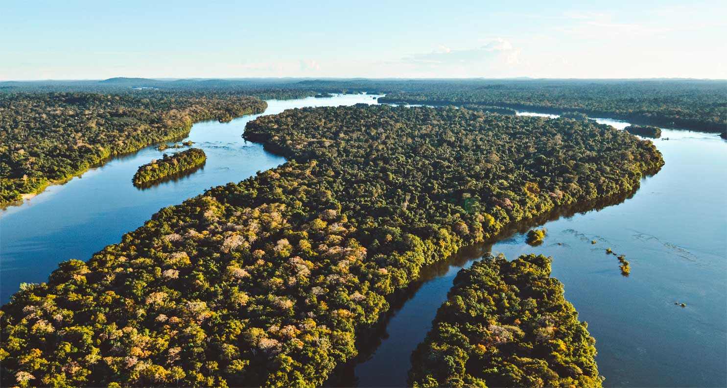 Jungle hotels are quite common in the northern region of Brazil. Due to the large amount of forest, both igapó and várzea, it is possible that hotel activities are carried out for tourists who wish to visit the region.
