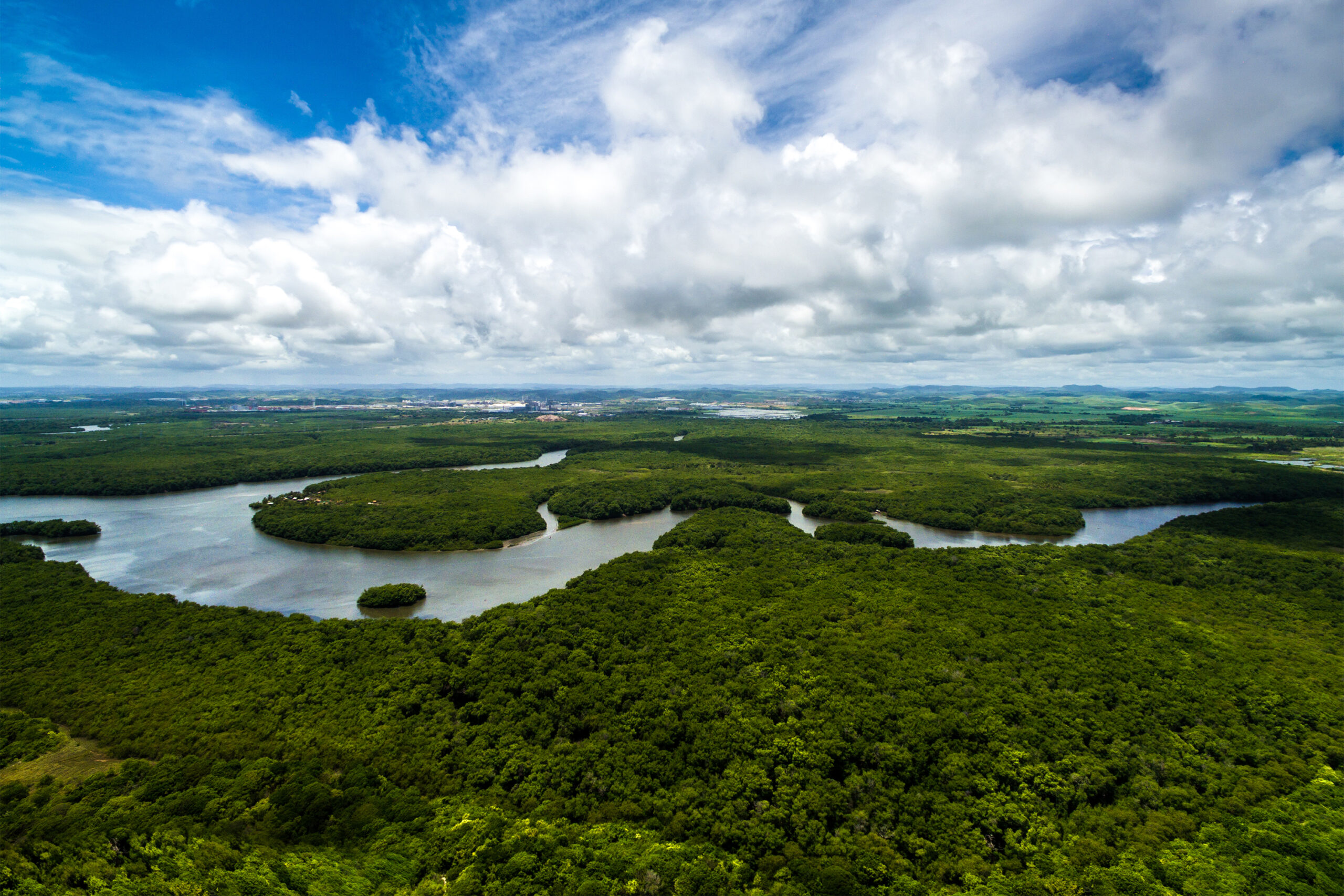 The Amazon is a place to be enjoyed. What would be the meaning of the Amazon rainforest, if not to get involved in it and what it offers - respecting and preserving space, of course.
