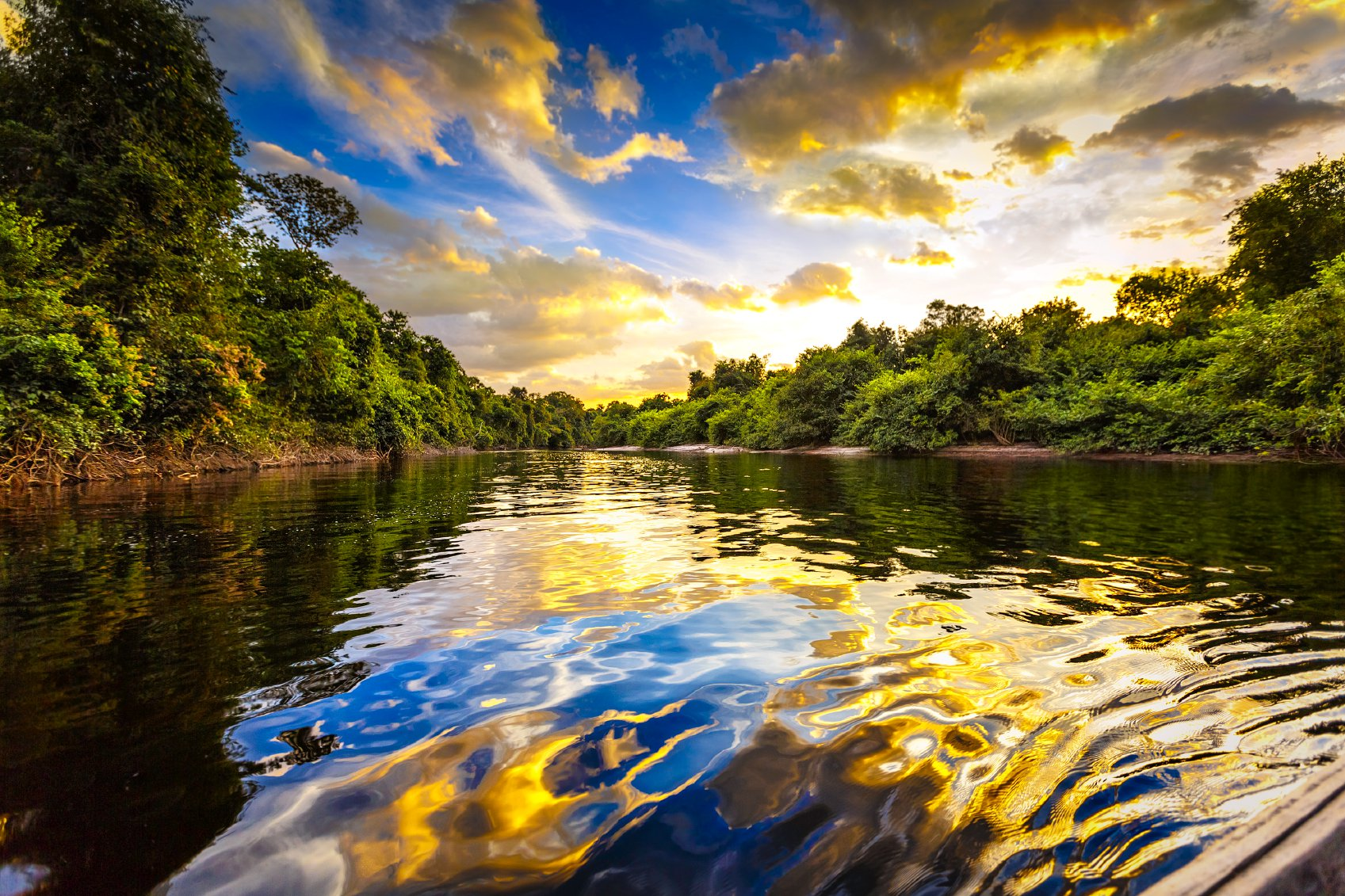 A tip for an unforgettable trip in the Amazon is to open your mind and put your worries aside. It is necessary to emerge in this experience without things from the outside making you lose focus on what will be shown in that destination.