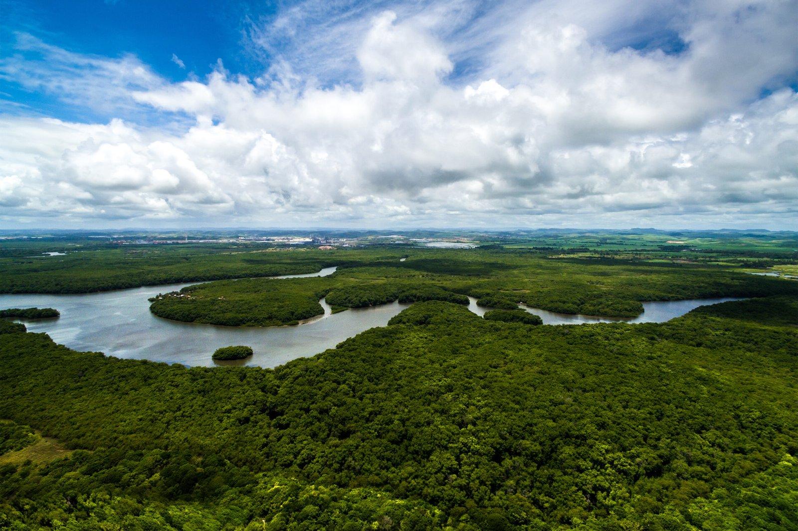 O Amazonas é um lugar para ser apreciado. Qual seria o sentido da floresta amazônica, senão se envolver nela e no que ela oferece – respeitando e preservando o espaço, é claro.