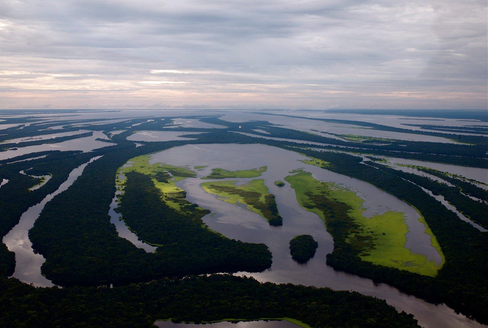 Mas se o seu interesse é conhecer a floresta amazônica, você pode visitar o Arquipélago de Anavilhanas, um conjunto de mais de 400 ilhas envolvidas por água doce. Uma localidade com uma diversidade gigantesca de espécies, cuja paisagem no fim do dia é impressionante.